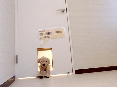 愛犬用出入口